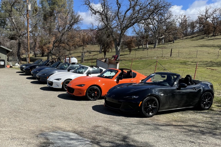 seven roadsters in a row
